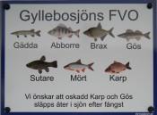 wsto fiskarter